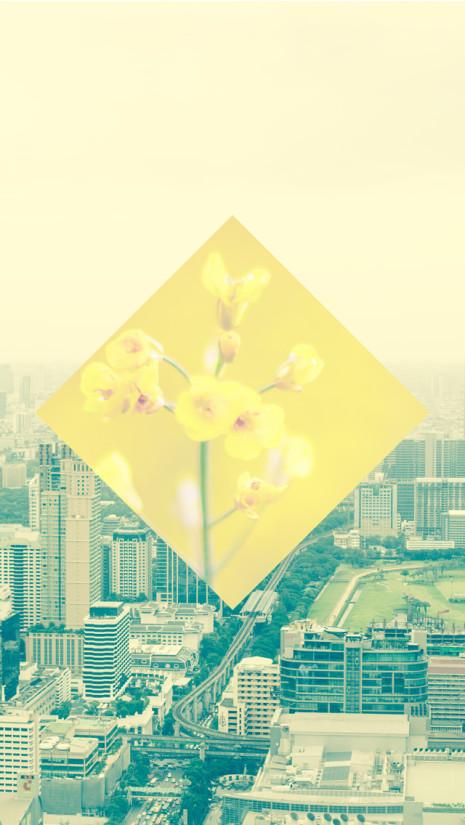 Bangkok-BG-iPhone